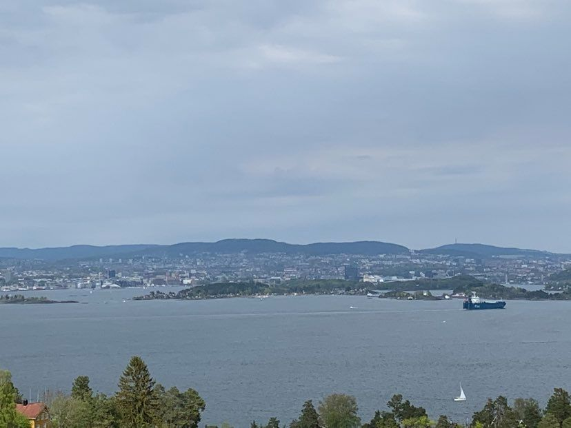 Leder - Oppfølgingsteamet for enslige, mindreårige flyktninger - Nesodden kommune