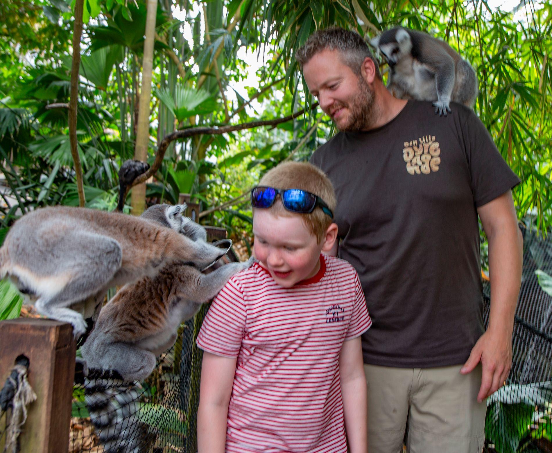 Liten  dyrepark  –  store  opplevelser